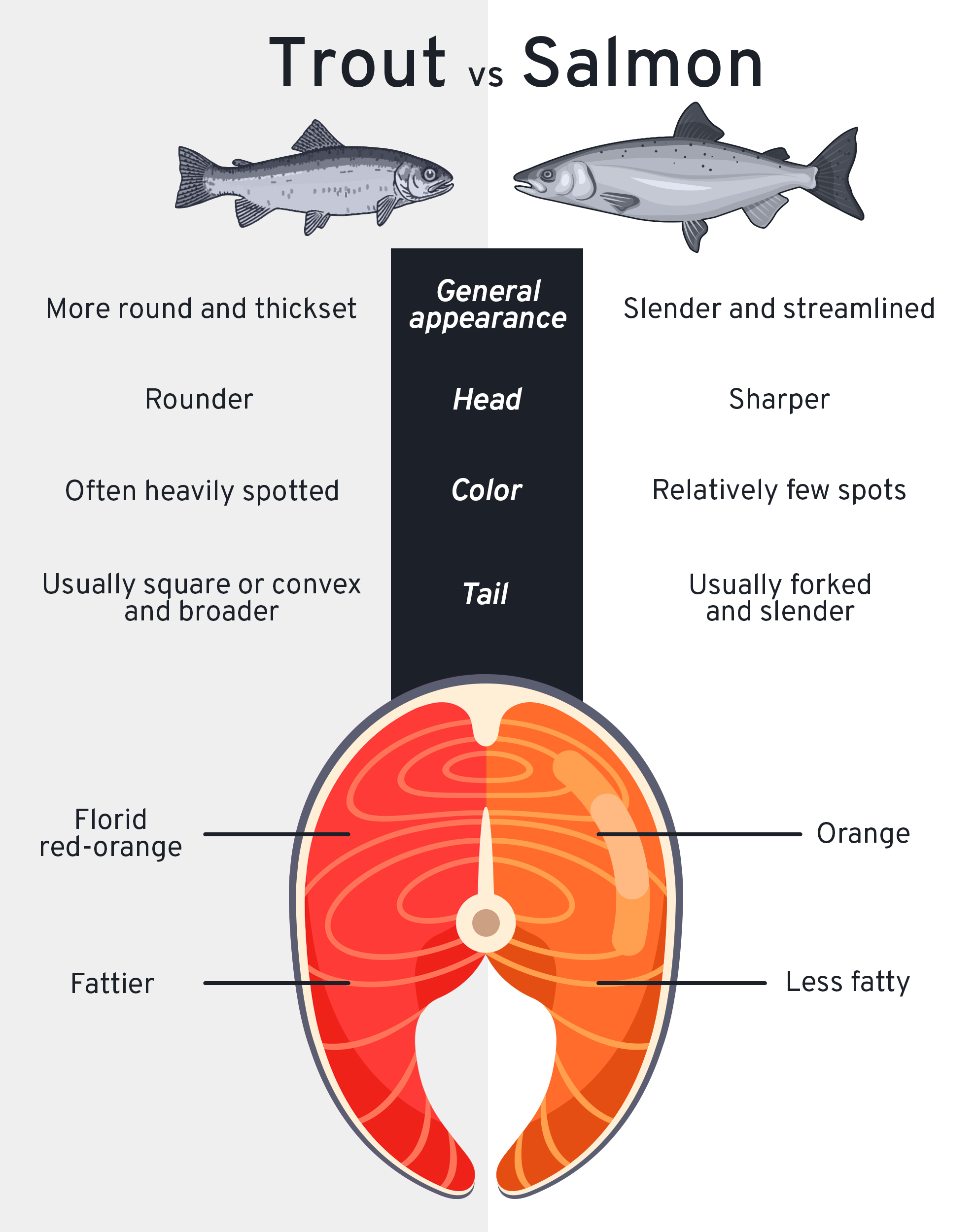 Let us walk you through the differences between rainbow trout and salmon. Illustration: Cena Lau/Inkstone