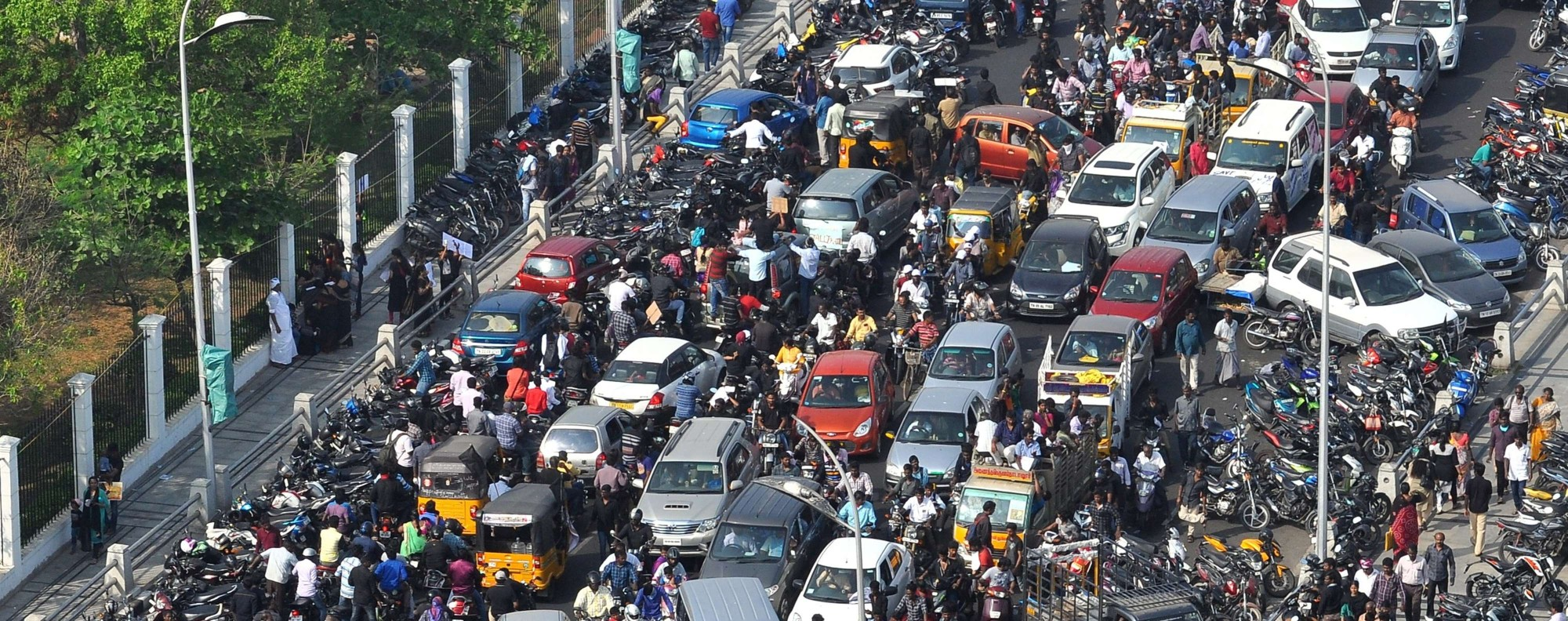Protestors fill the streets in Tamil Nadu. Photo: EPA