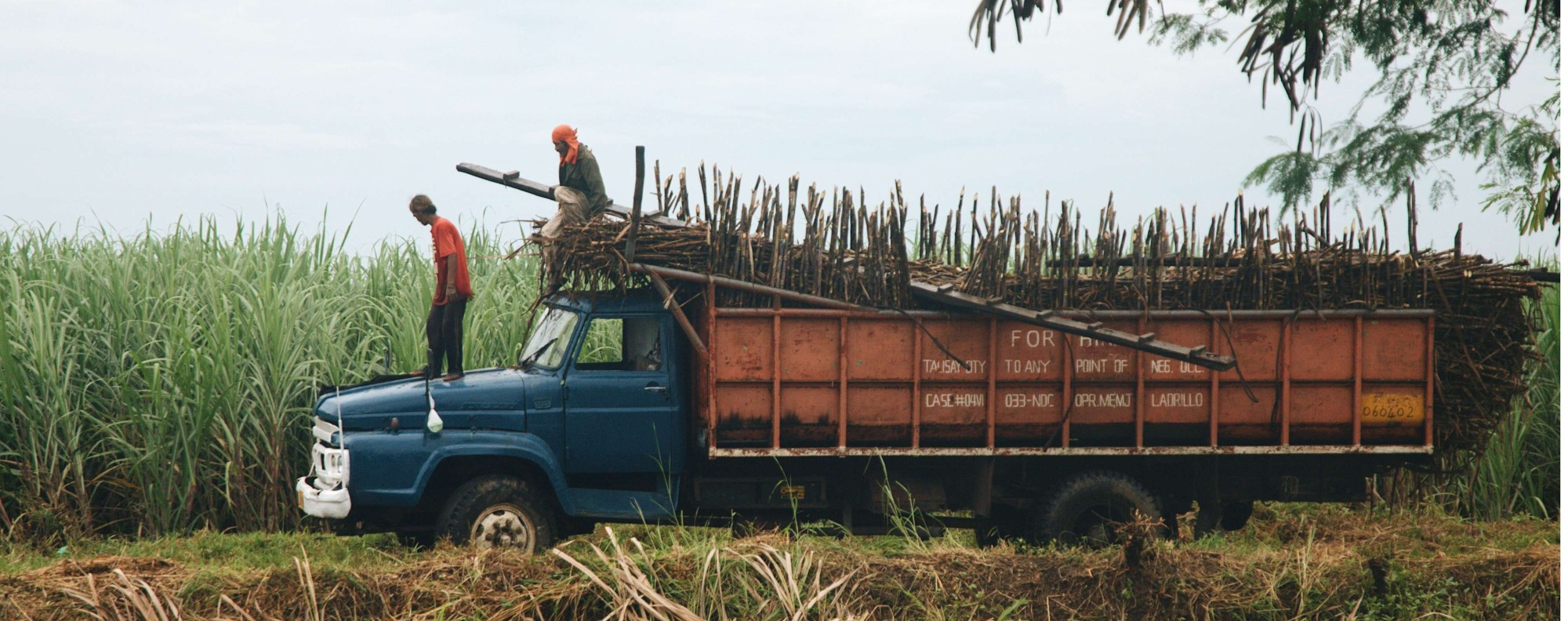Sugar cane trucks ply the roads in Bacolod. Photo: Karim Raslan