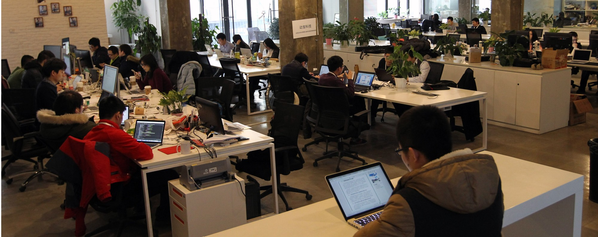 China's co-working spaces are growing in popularity. Photo: Simon Song