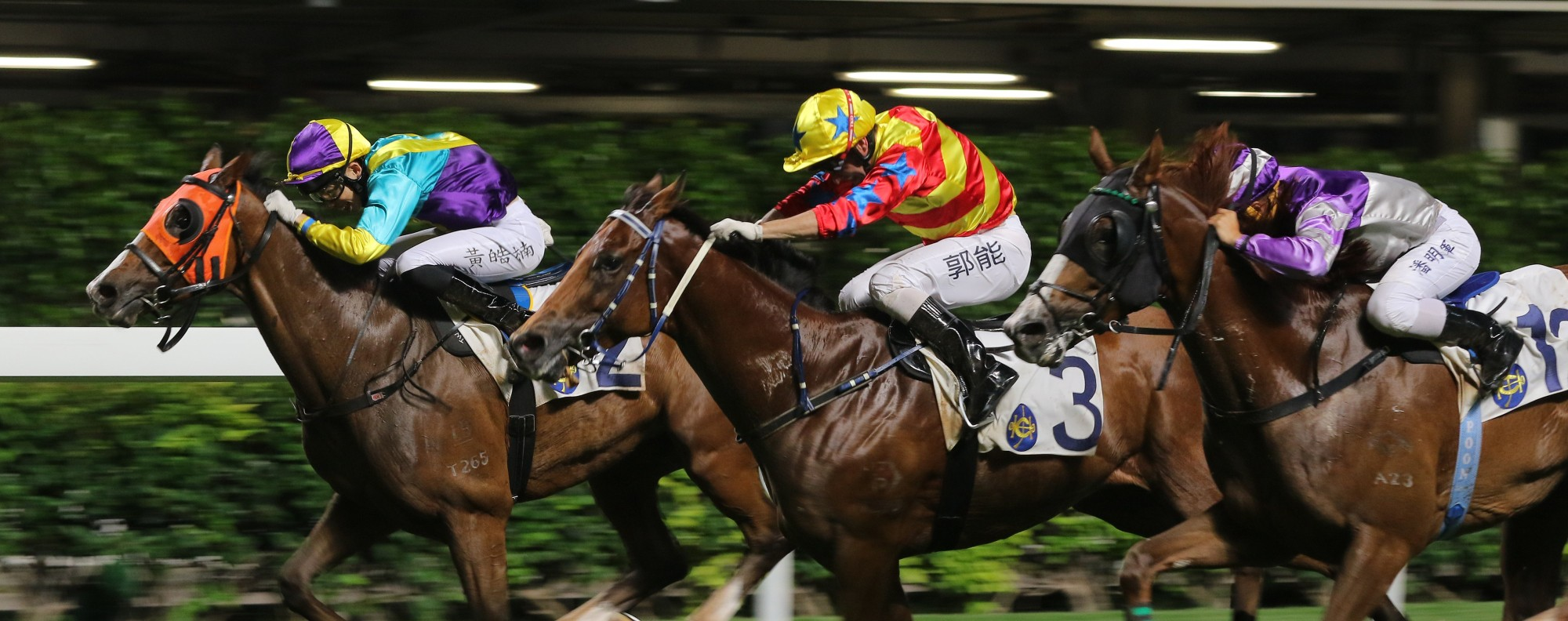 A race at Happy Valley, in Hong Kong, in May.