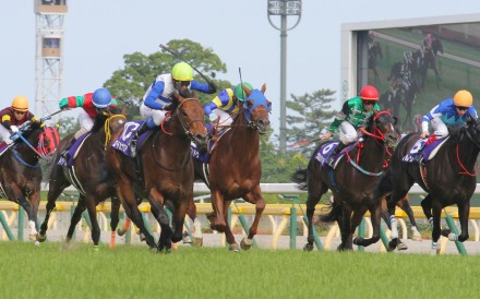 Last year's winner Lord Kanaloa (yellow cap) returns in better form this year, having won three Group One races, including the Yasuda Kinen over 1,600m.