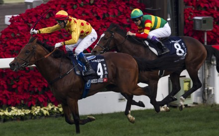 Douglas Whyte wins the HK$22 million Longines Hong Kong Cup with Akeed Mofeed at Sha Tin on Sunday. Photos: Reuters
