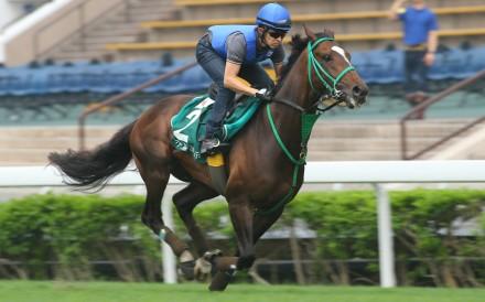 Japanese jockey Yuichi Fukunaga is upbeat about Epiphaneia's chances on Sunday. Photo: Kenneth Chan
