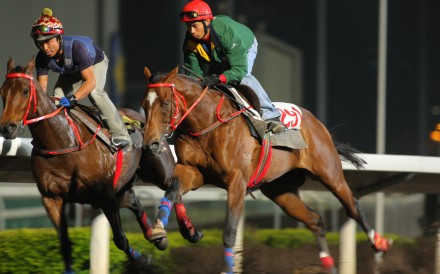 Howard Cheng Yue-tin can lodge an appeal on Thursday over his handling of Jun Ju in the Silvermine Bay Handicap on October 12. Photo: Kenneth Chan