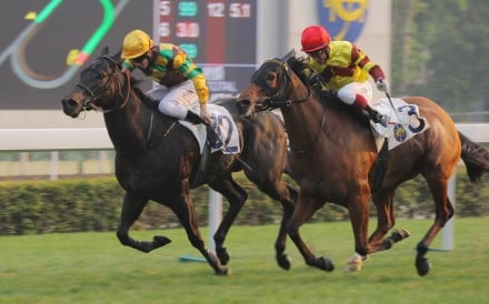 Richard Gibson-trained Winfull Patrol (No 12, ridden by Derek Leung Ka-chun) lands one of the biggest plunges seen this year, smashed from HK$210 to HK$51 and lighting up the Sha Tin betting board in the background. The brown lamp indicates a price drop of more than 50 per cent.