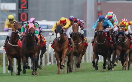 Race 7, Aerovelocity, ridden by Zac Purton, won the Centenary Sprint Cup(HK Group 1, 1200m) at Sha Tin on 31Jan16.