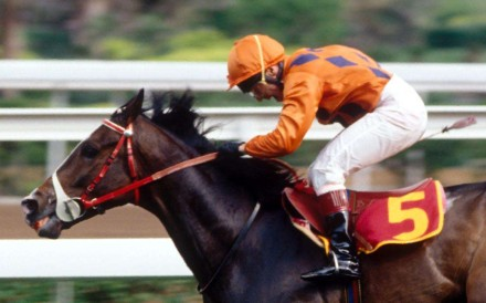River Verdon was Hong Kong's best galloper of the early 1990s, and became a trailblazer by becoming the first Hong Kong-trained horse to race outside the jurisdiction. Photo: SCMP Pictures