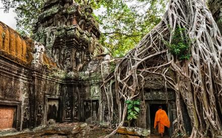 Ta Prohm temple, Angkor.