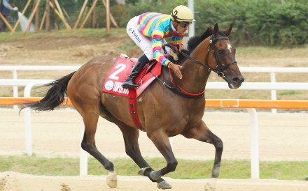 Super Jockey and Karis Teetan in Seoul. Photos: Lo Chun Kit