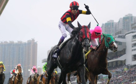 A Shin Hikari wins the 2015 Hong Kong Cup. Photos: Kenneth Chan