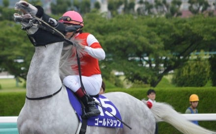 Some of Japan's best gallopers seem to have a screw loose – we assess four great horses' madness with our exclusive 'red ribbon ratings'