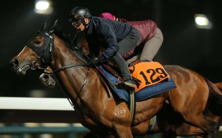 Alexis Badel gallops Helene Charisma at trackwork. Photos: Kenneth Chan