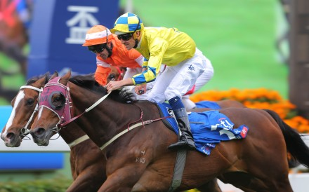 Hugh Bowman guides Werther to victory in the Group One Citi Hong Kong Gold Cup at Sha Tin on Sunday. Photos: Kenneth Chan