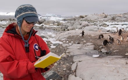 Carpenters, bakers, pastry chefs, scientists – polar institute has launched a public appeal to recruit around 40 French-speaking people for a variety of jobs, which will last for up to 14 months, at its six bases in the Arctic and Antarctica
