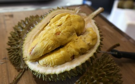 Love it or hate it, you can't mistake the durian's unique aroma. Photo: David Wong