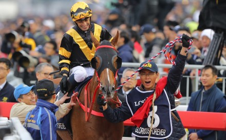 Glorious Forever and Silvestre de Sousa are led back by a happy mafoo after their Longines Hong Kong Cup victory. Photos: Kenneth Chan