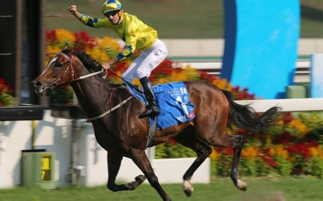 HK Racing | South China Morning Post
