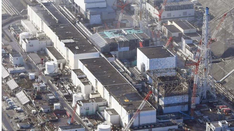 a discussion on issues related to the aftermath of fukushima daiichi and daini nuclear power station