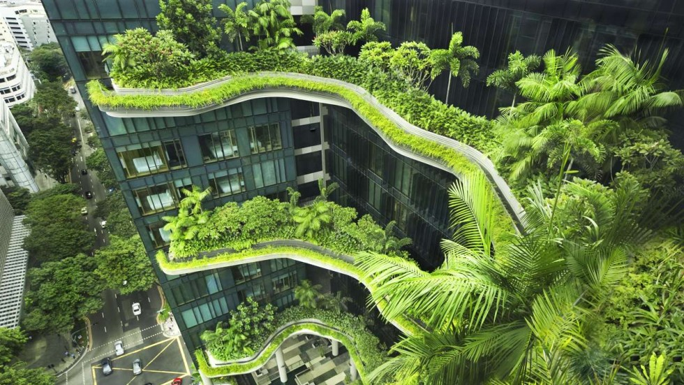 Roof Design Ideas: Buildings That Blend With Nature: Why Singapore Has Them