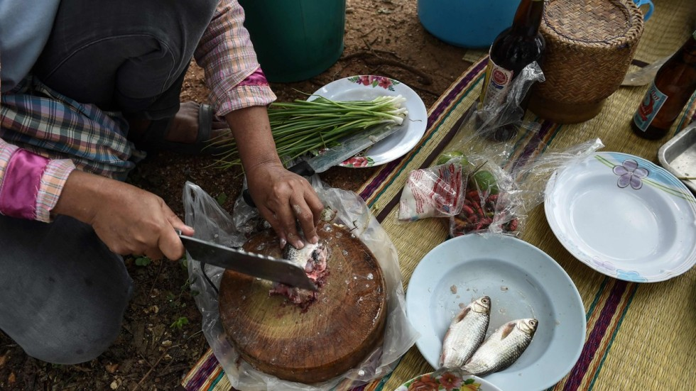 Thai doctors battle cancer causing raw fish dish in for Raw fish dish