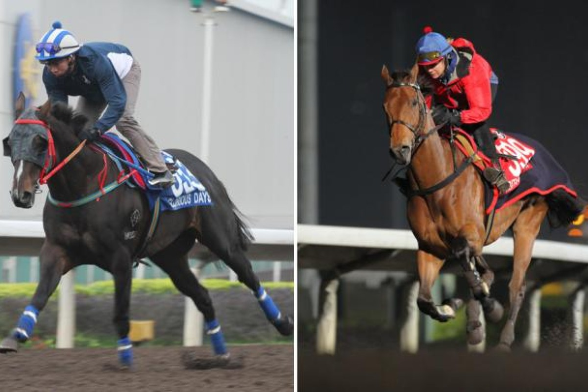 Glorious Days and his main rival Ambitious Dragon strut their stuff front of a big trackwork crowd at Sha Tin yesterday. They both look in mint condition for the Hong Kong Mile. Photos: Kenneth Chan