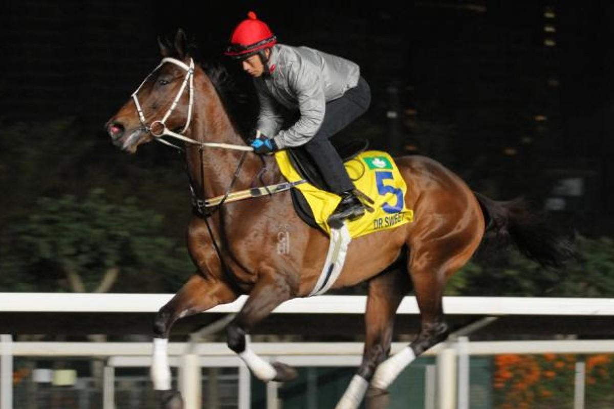Choi Kam-fai riding Dr Sweet. Photo: Kenneth Chan