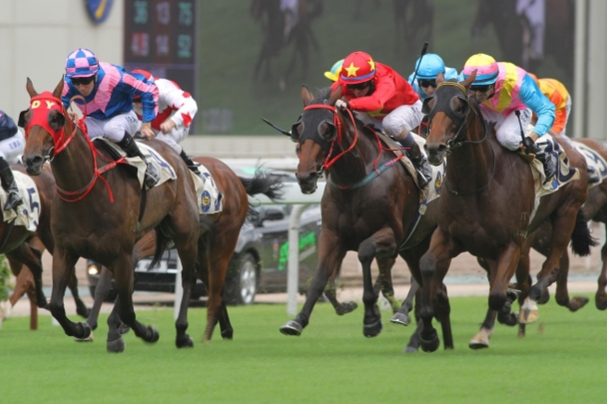 King Haradasun (inside) showed life last time with blinkers on.
