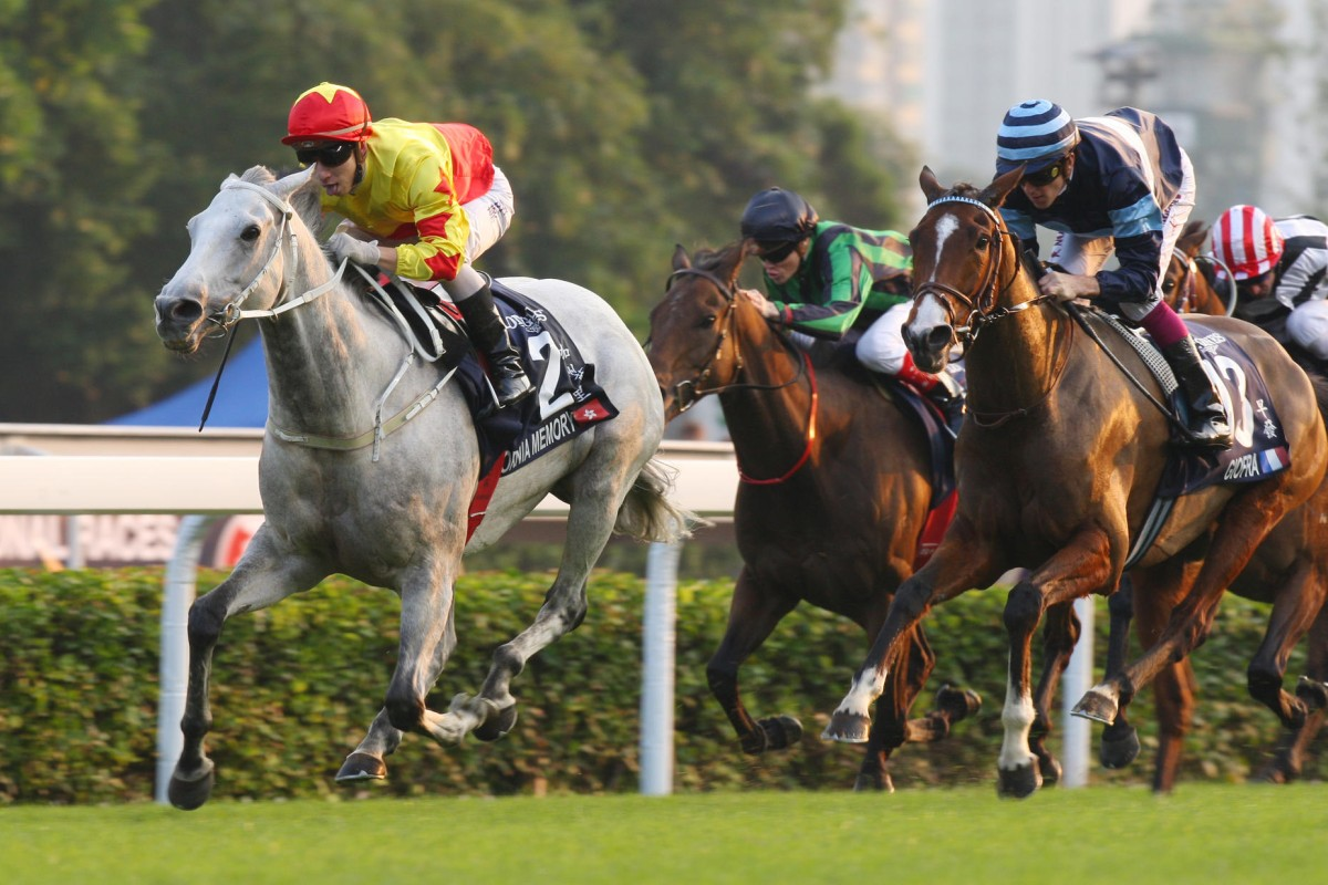California Memory could be retired if he doesn't show vast improvement, says trainer Tony Cruz. Photo: Kenneth Chan