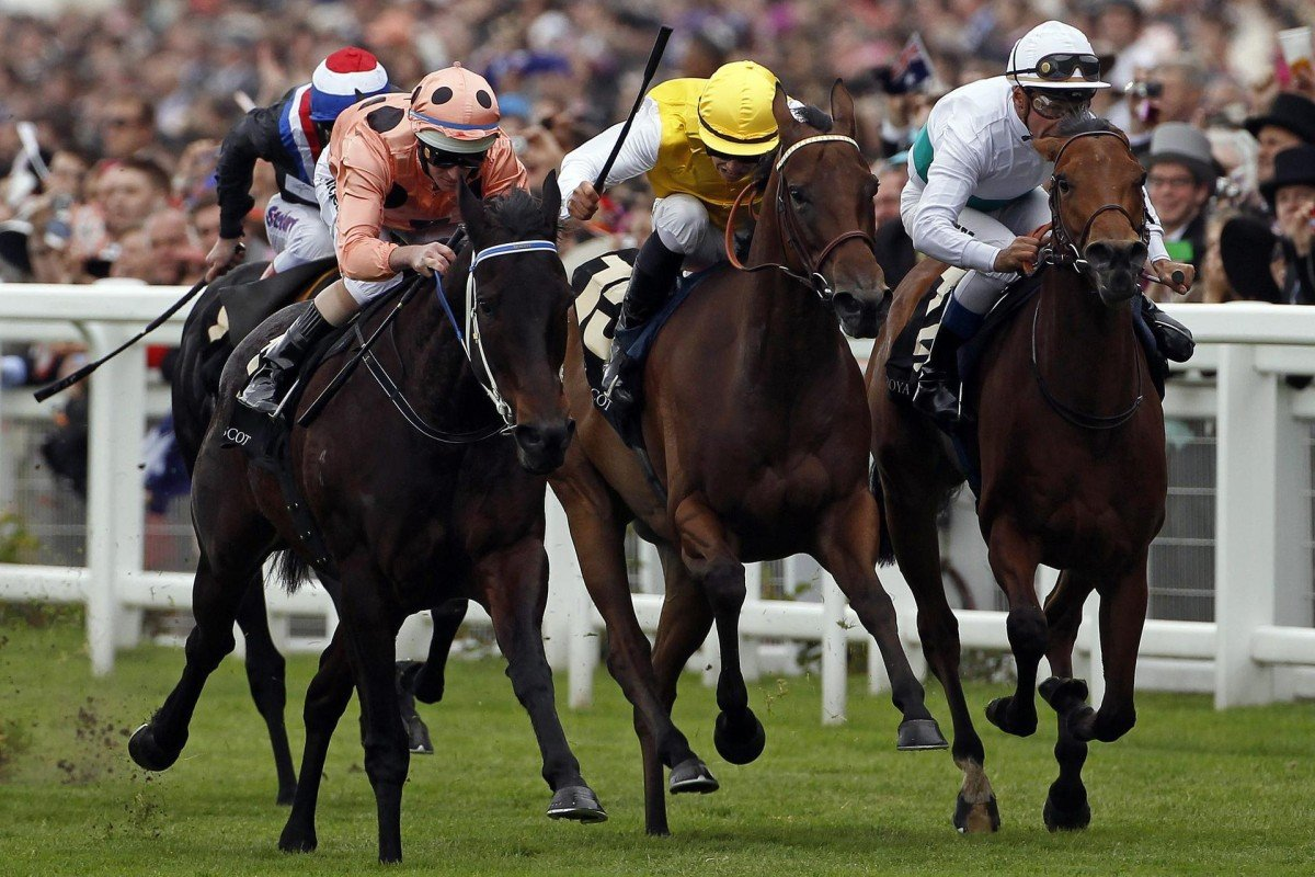 Moonlight Cloud (right), seen here finishing second to Black Caviar in last year's Diamond Jubilee Stakes at Royal Ascot, leads the European contingent in the Hong Kong Mile.