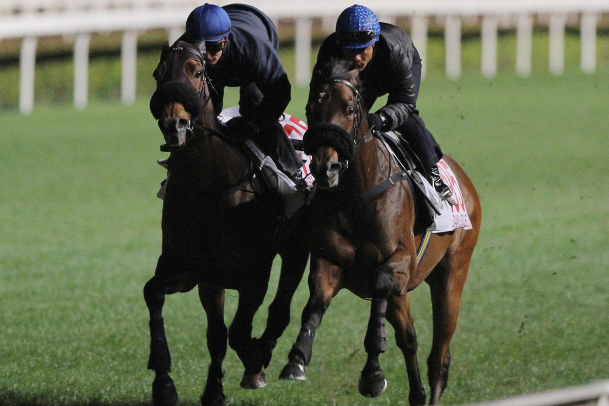 Dan Excel (outside) shades Military Attack in their gallop. Photo: Kenneth Chan