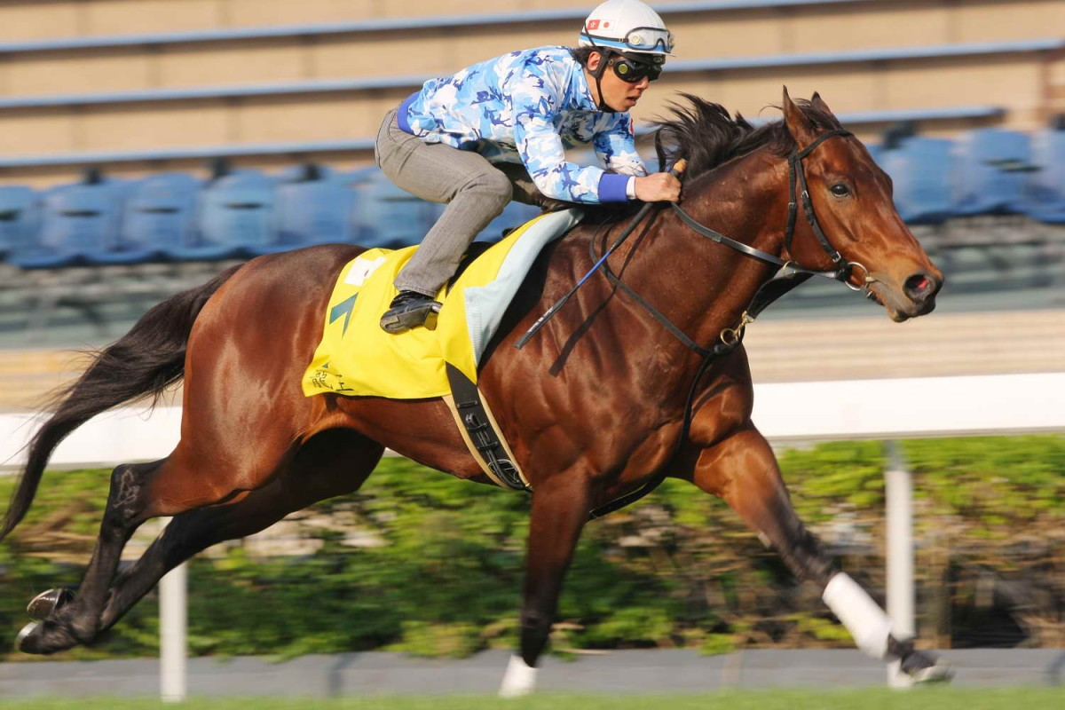 Lord Kanaloa flies down the home straight at Sha Tin on Wednesday morning. Photo: Kenneth Chan