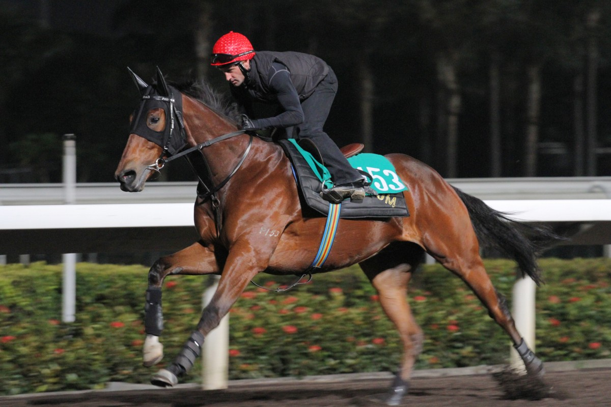 Neil Callan guides Griffindor round the all-weather track at Sha Tin. Callan successfully appealed an improper riding charge - the first jockey to do so in a decade in Hong Kong. Photo: Kenneth Chan