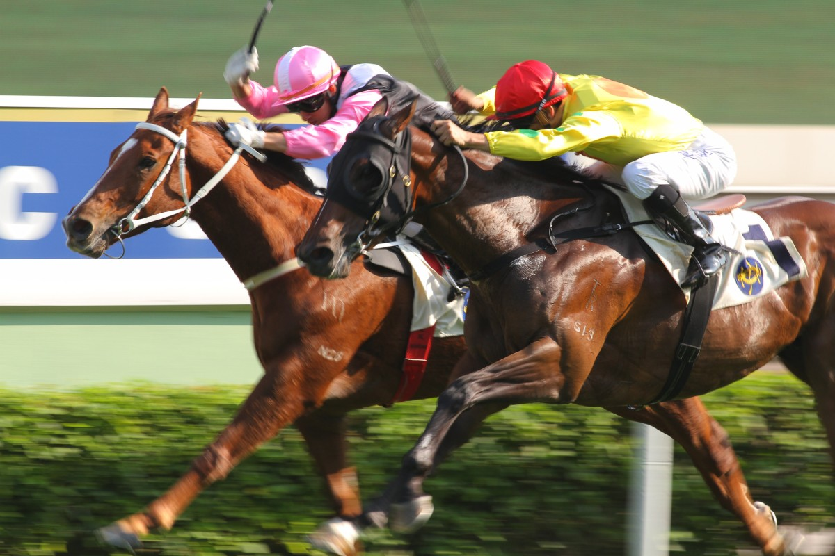 The Magic Man works on the outside to dead heat with Beauty King (Matthew Chadwick).