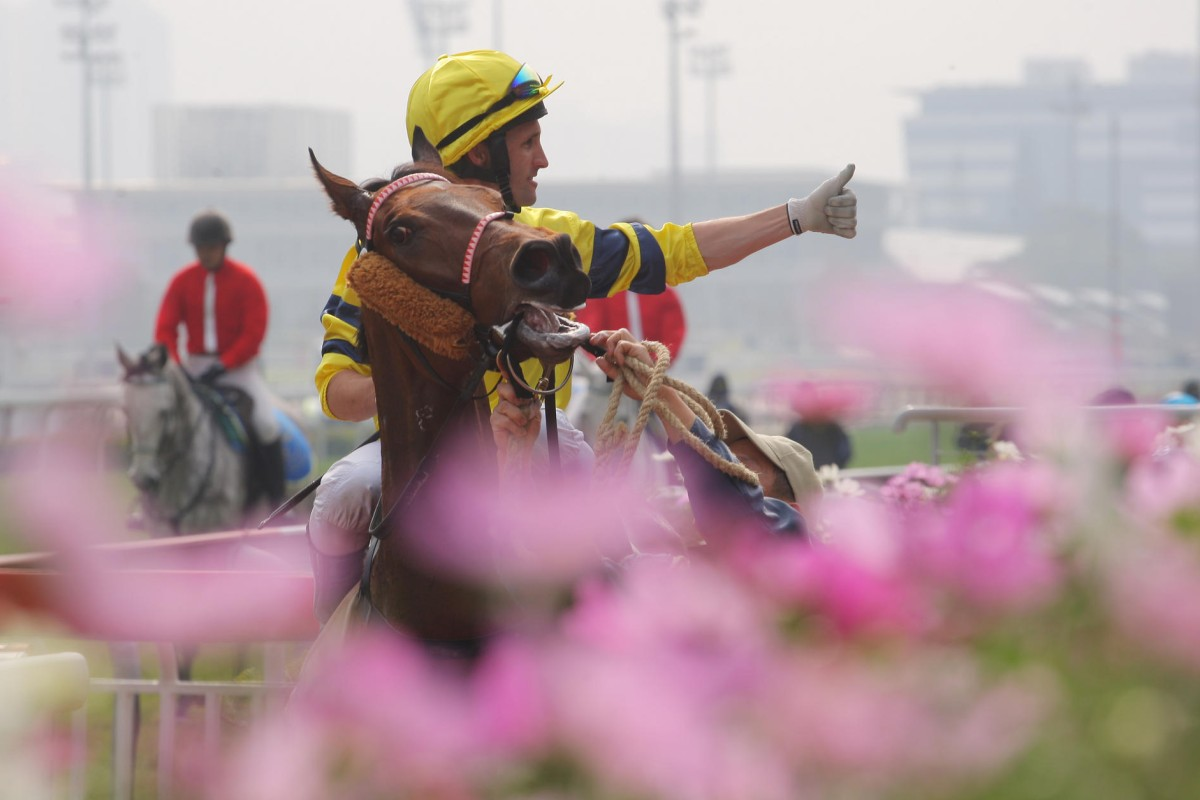 Neil Callan returns after steering Diamond Master to a straight course victory. Photos: Kenneth Chan
