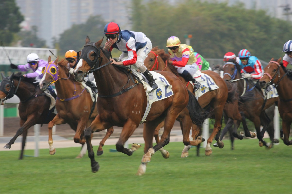 Racing Hero (Zac Purton) wins the Luk Wu Handicap at Sha Tin on Sunday, but most of the attention revolved around Dicky Lui, who set suicidal sectionals on  Numero Uno (gold cap). Photo: Kenneth Chan