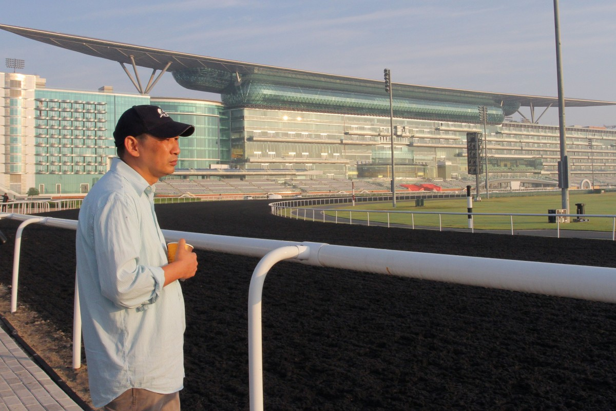 Michael Chang surveys Meydan in 2014, before Rich Tapestry's second in the Golden Shaheen. He returns this year with a very strong chance of going one better on the newly laid dirt surface. Photos: Kenneth Chan