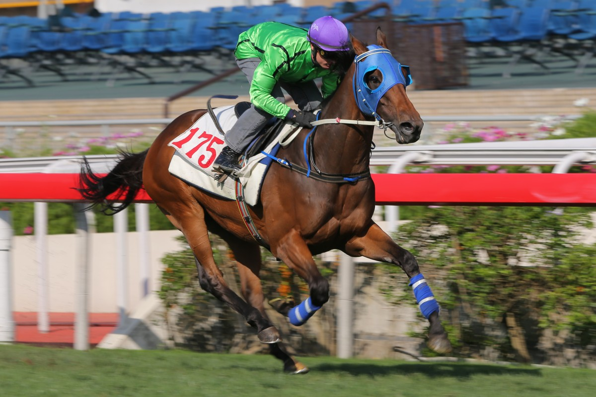 Military Attack cruises to the line to win a barrier trial at Sha Tin on Tuesday. Photos: Kenneth Chan