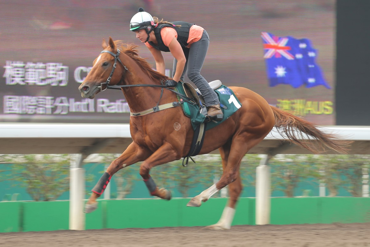 Australia's Criterion finished a credible third to Blazing Speed in Sunday's QE II Cup. Photo: Kenneth Chan