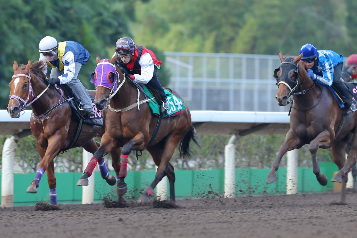 Redkirk Warrior (Zac Purton) and Multivictory (Alvin Ng) race away in a dirt trial at Sha Tin on Tuesday. Photo: Kenneth Chan