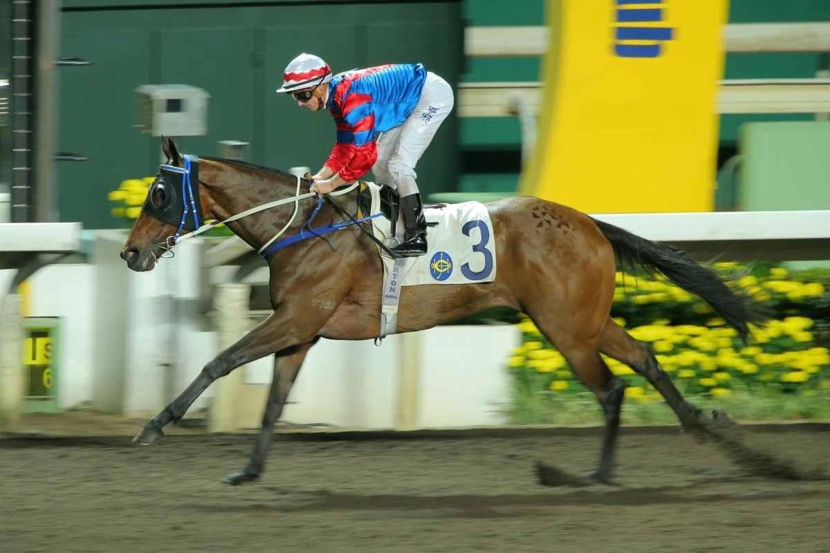 Zac Purton stands up as Gun Pit records an effortless win on Wednesday night. He will now target the Champions Cup in Japan. Photos: Kenneth Chan