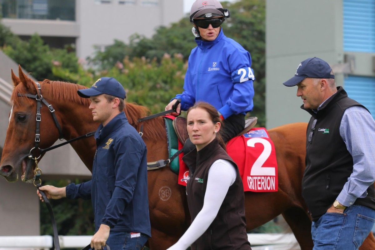 Jockey Craig Williams gives trainer David Hayes a glowing report after Hong Kong Cup runner Criterion caught the eye.