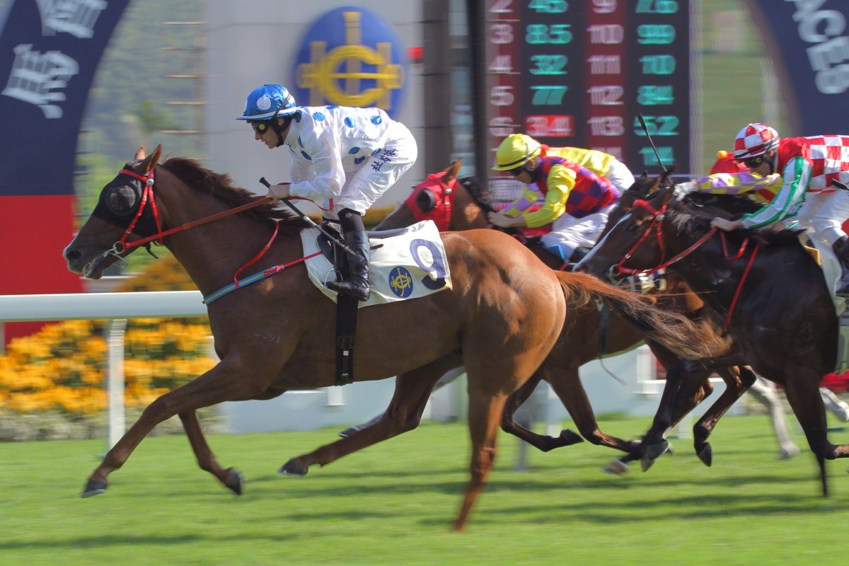Contentment coasts home on debut under Mirco Demuro. Photo: Kenneth Chan