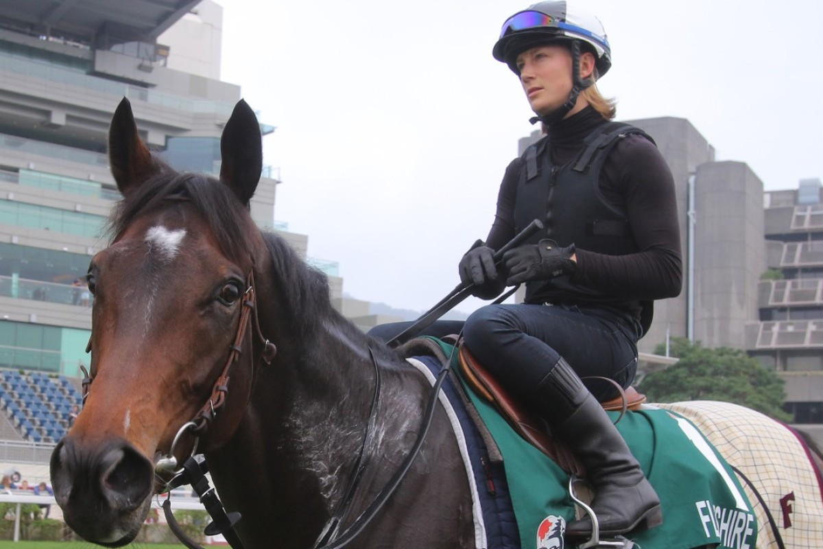 Hong Kong Vase title-holder Flintshire returns to the stable after a gallop at Sha Tin today. Photo: Kenneth Chan.