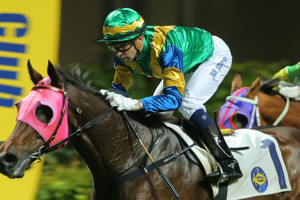 Strong Foundation has been in terrific form since returning to original trainer Francis Lui. Photo: Kenneth Chan