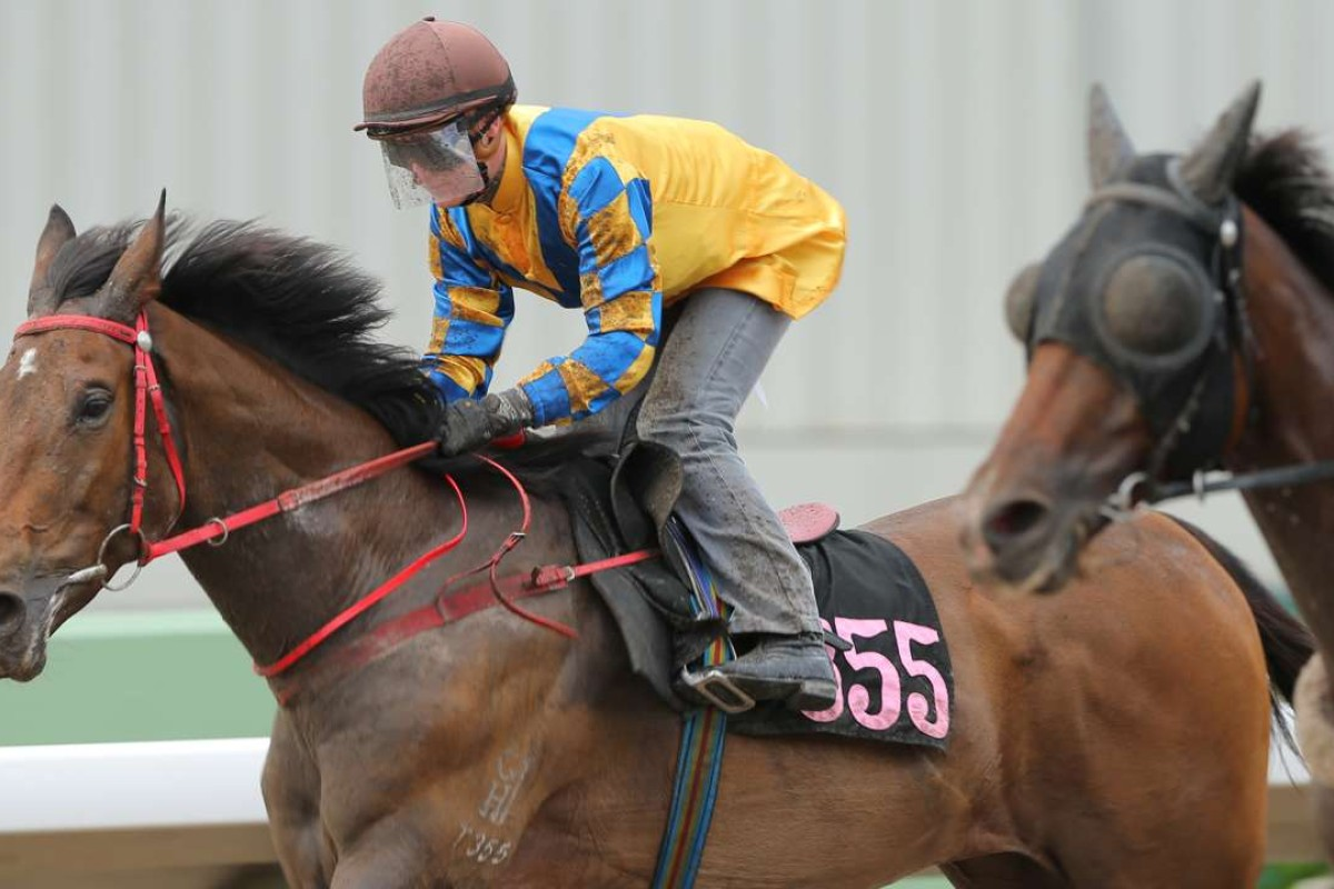 Lucky Girl ridden by Zac Purton in a trial on the all-weather track at Sha Tin. Photos: Kenneth Chan