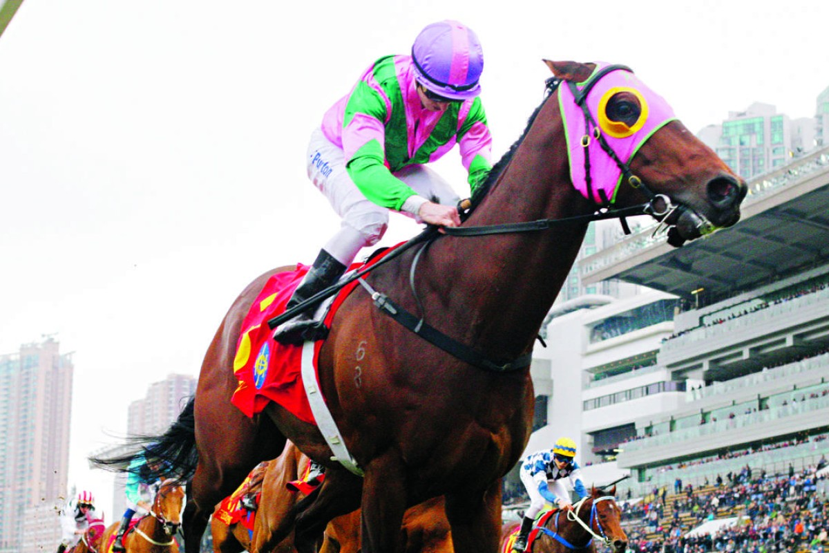 Aerovelocity, ridden by Zac Purton, wins the Centenary Sprint Cup at Sha Tin on January 31, this year. The race has been elevated from a Hong Kong Group One to an international Group Two. Photos: Kenneth Chan
