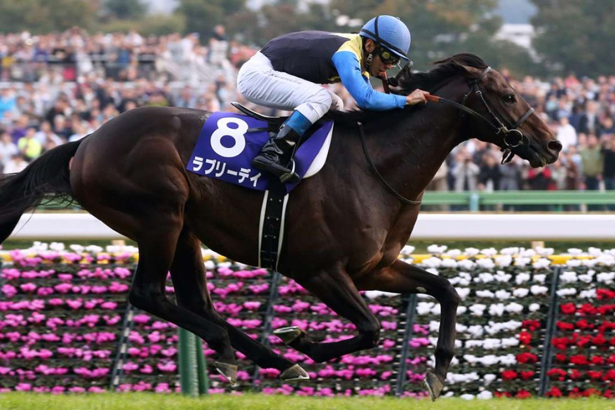 Lovely Day (Suguru Hamanaka) wins the Tenno Sho (Autumn) in November. Yasutoshi Ikee's son of King Kamehameha is the horse to beat in today's Audemars Piguet QE II Cup. Photo: Japan Racing Association