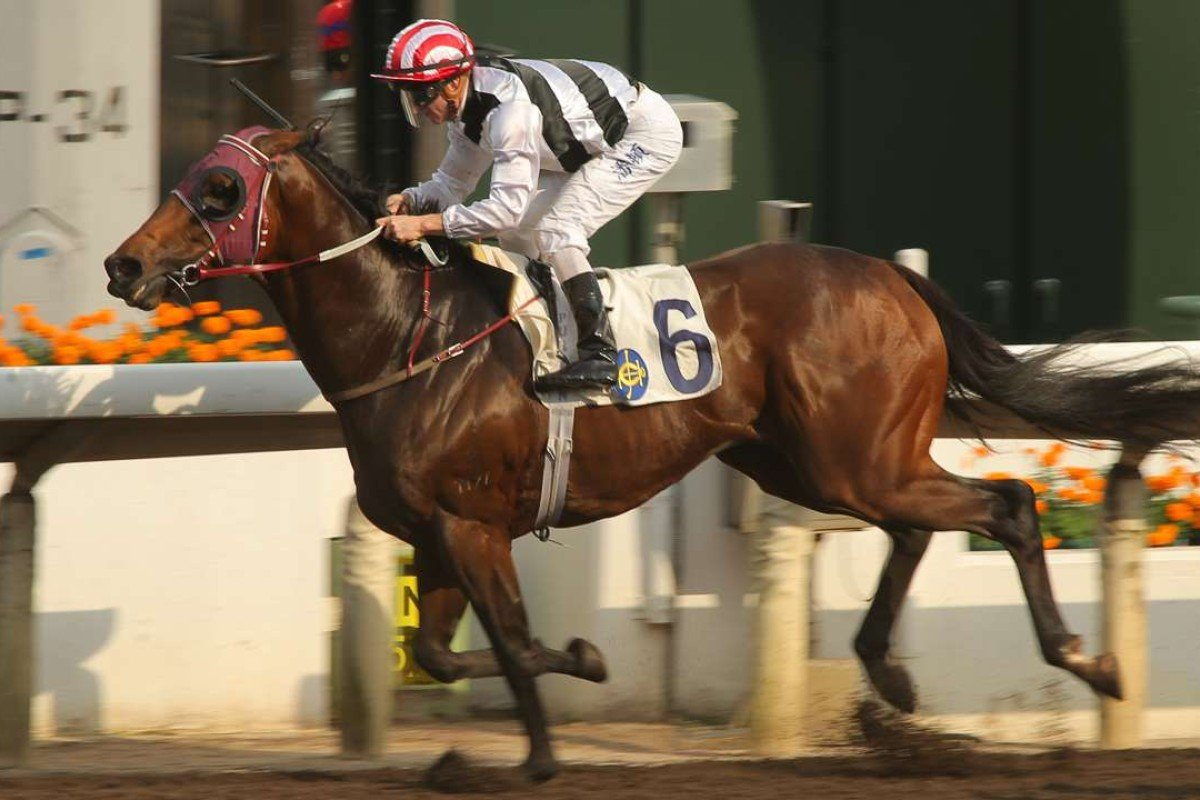 Happy Meteor was impressive at his first run on the dirt. Photo: Kenneth Chan