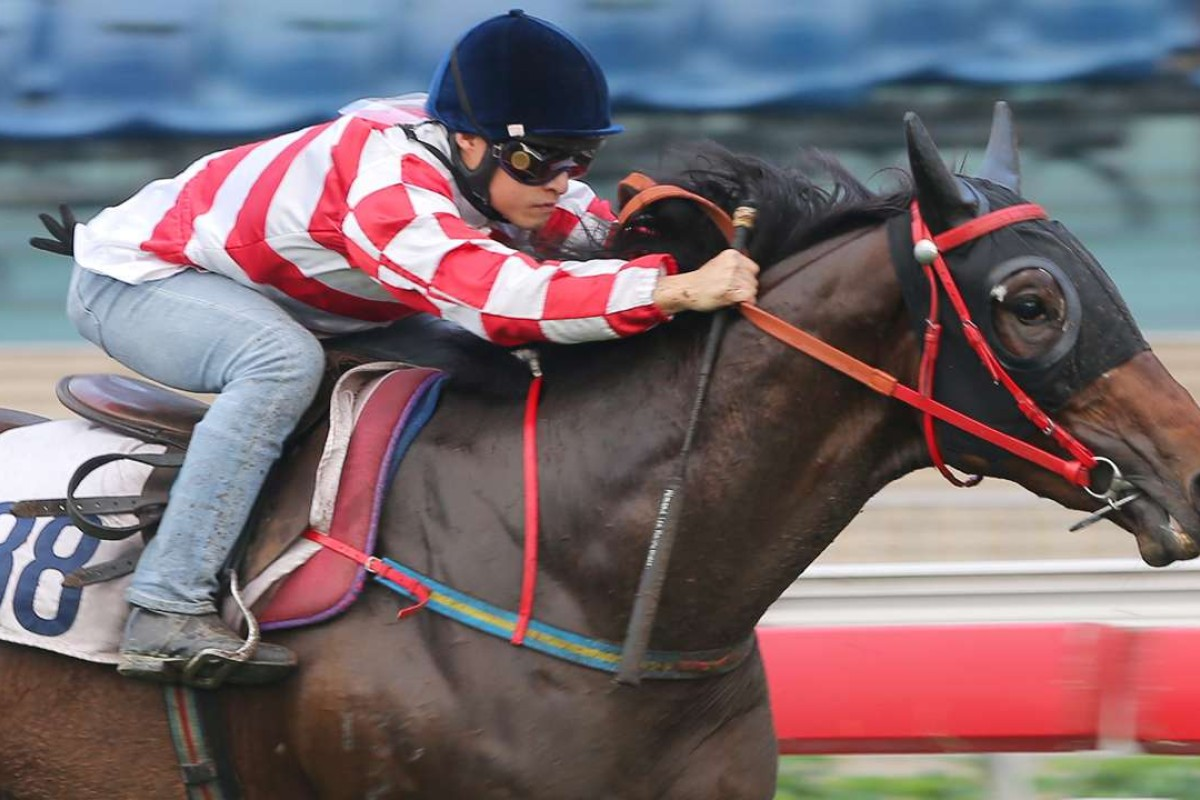 Dr Listening looks set to win before the end of the season. Photo: Kenneth Chan